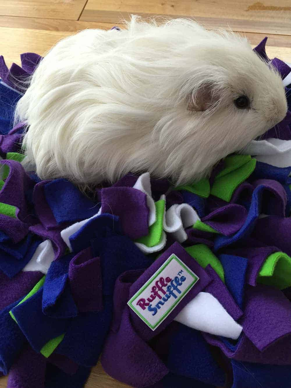 Guinea Pig Snuffle Rug Toy