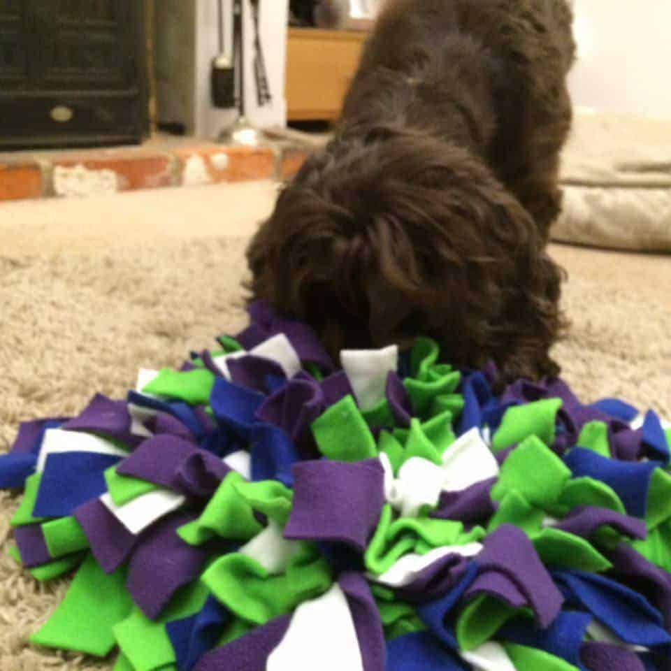 Snuffle Mats For Dogs Uk