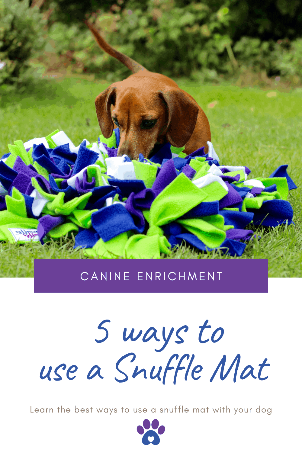 5 ways to use a snuffle mat