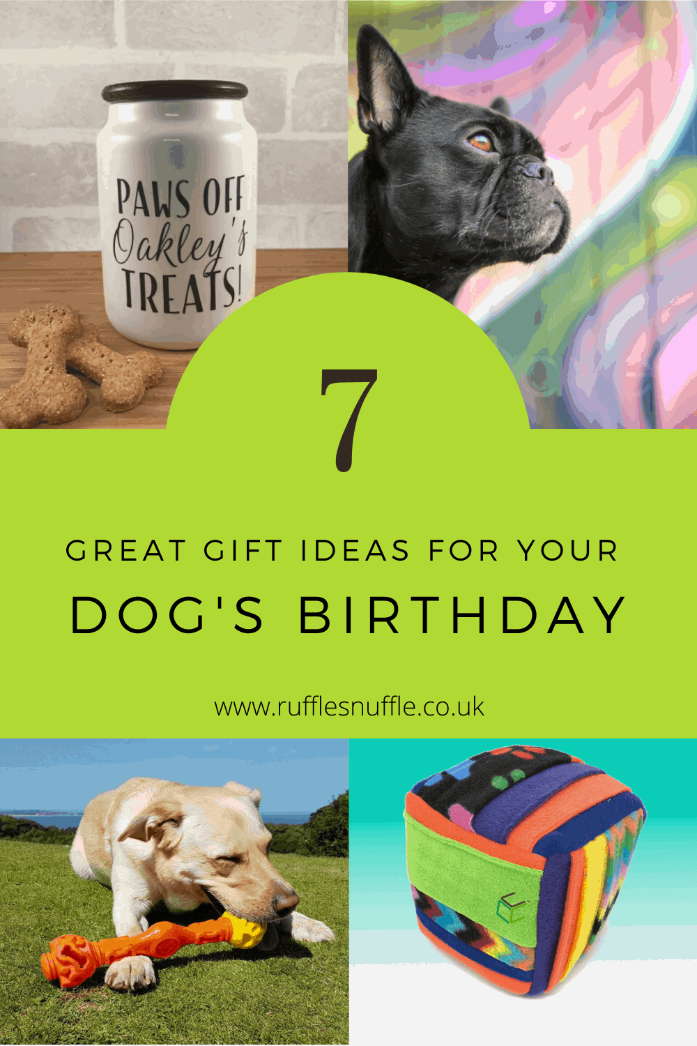 7 great gift ideas for your dog's birthday