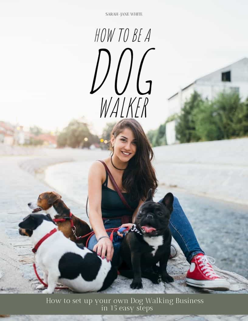 BOOK COVER HOW TO BE A DOG WALKER 2