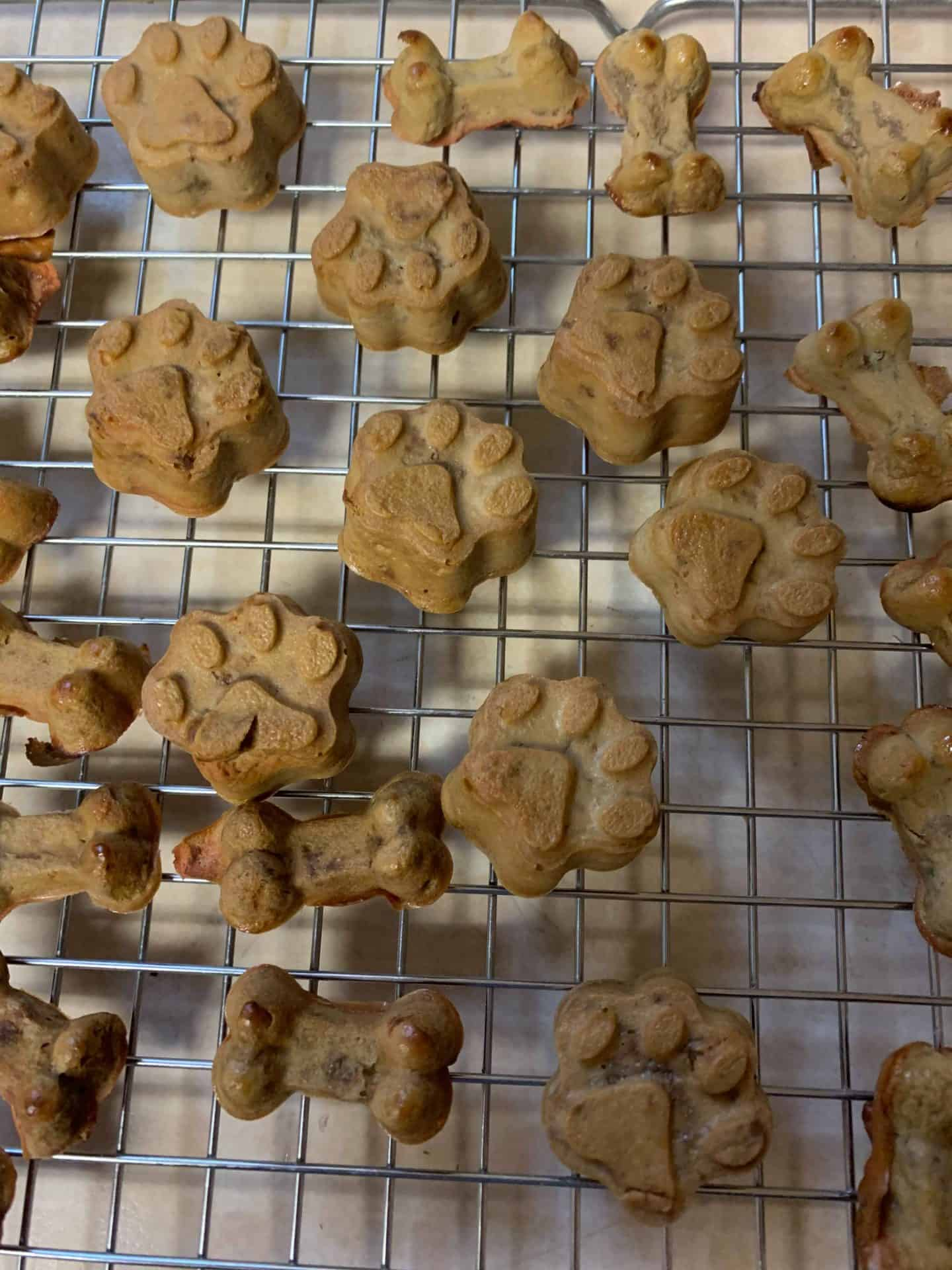 Liver cakes for dog baked with sweet potato - no flour