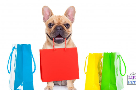 How to shop like a minimalist for you and your dog