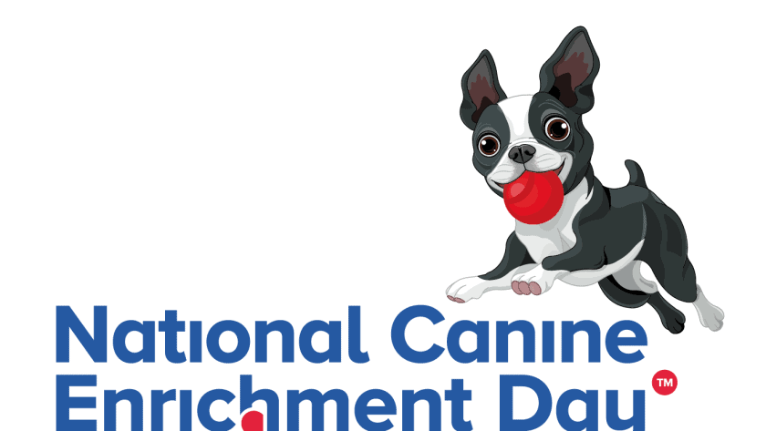 national canine enrichment day