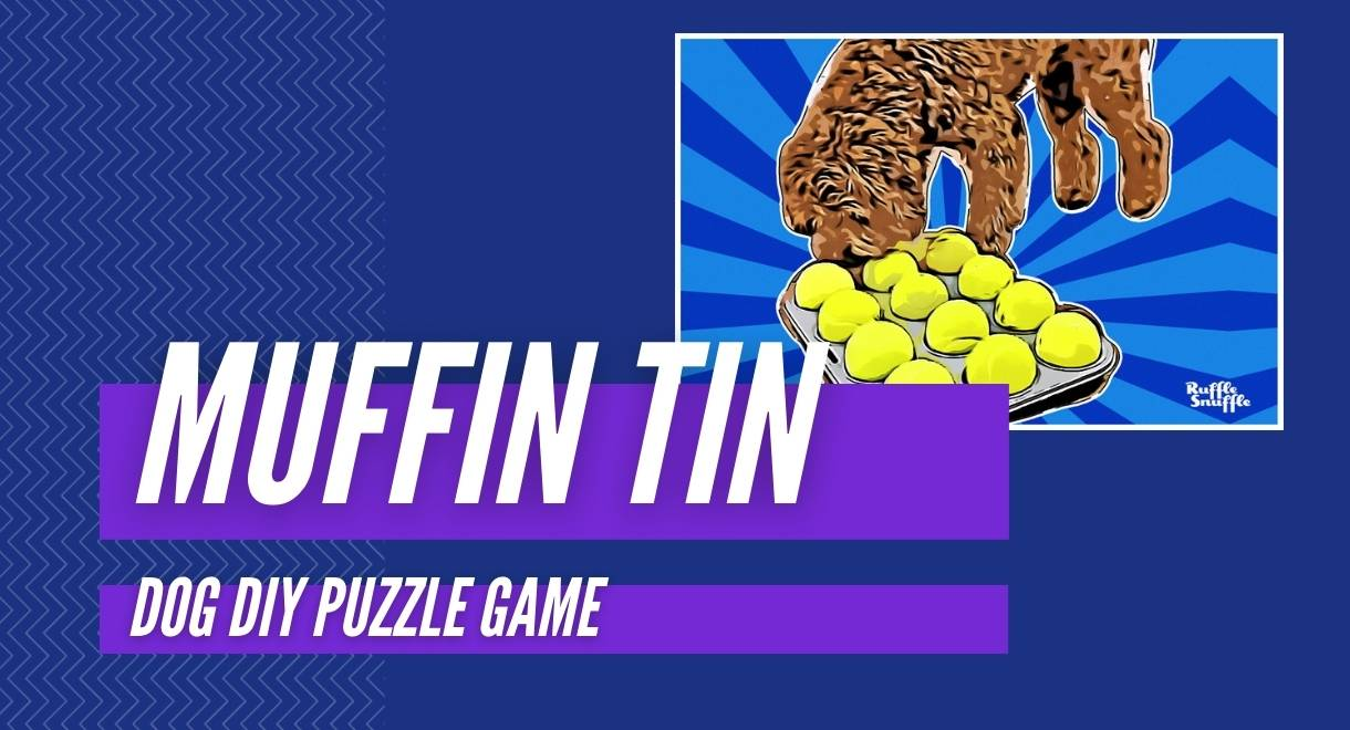 Muffin Tin Game FOR DOGS 1