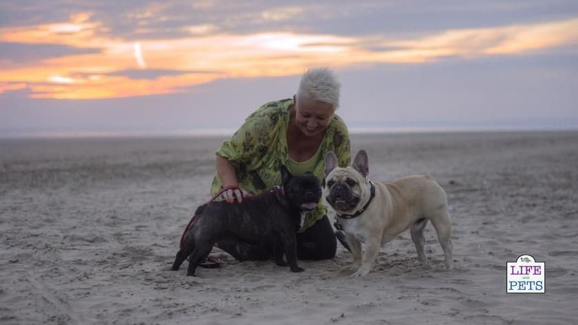 Playtime with you and a calm companion is good for your anxious dog