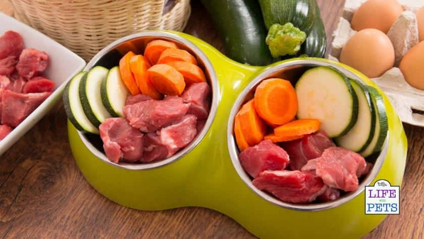 healthiest meat for dogs