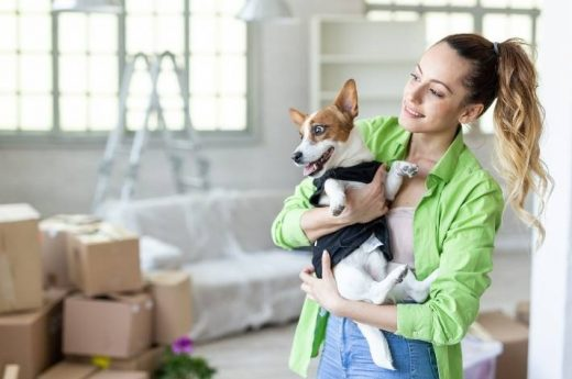 10 tips for a save move with your pets