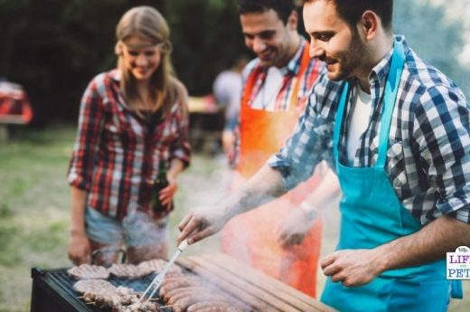BBQ safety tips with pets