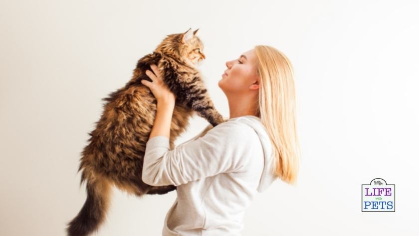 gifts for cat mums
