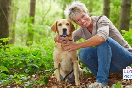 Did You Know Sugar Moms Look More Attractive Thanks to Their Pets!